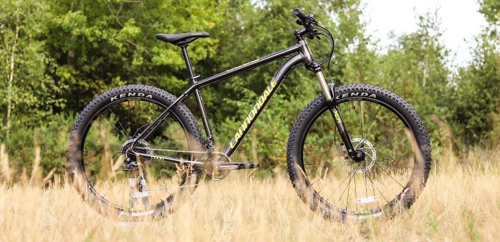 90f8a2385e0 Cannondale Cujo Review | Tredz Bikes