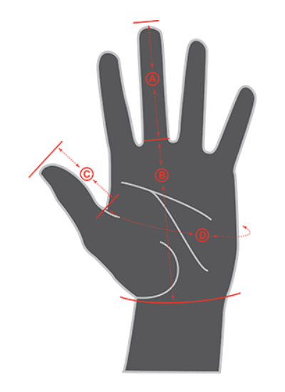Illustration showing hand measurements of Specialized Mens Gloves