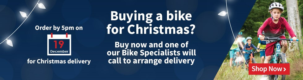 Buying a Bike for Christmas?