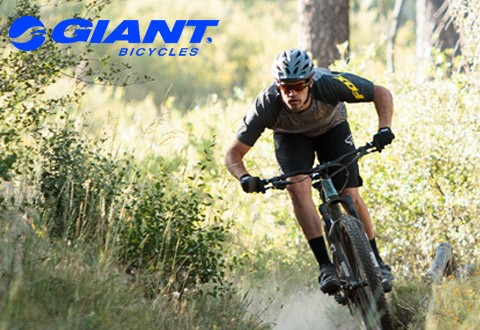 Giant Mountain Bikes