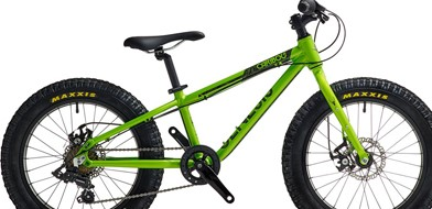20 inch hardtail