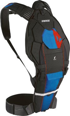 Dainese Pro Pack Evo Back Protector and Back Pack 2017