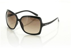 Product image for Carve Grace Sunglasses