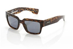 Carve Tijuana Sunglasses