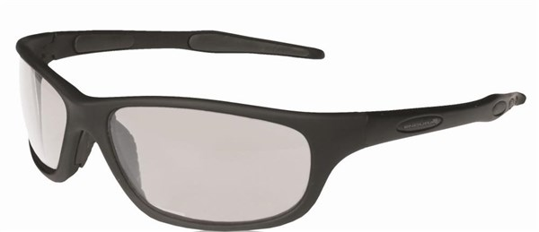 Image of Endura Cuttle Glasses
