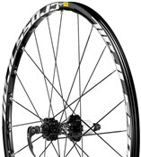 Crosstrail Disc INTL MTB Wheel