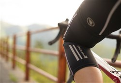 Endura Windchill Cycling Kneewarmers SS16