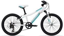 Trail 20w Girls 2014 - Kids Bike