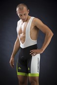 Green Race Design 6 Panel Cycling Bib Short 2014