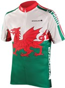 Endura CoolMax Printed Wales II Short Sleeve Cycling Jersey SS16