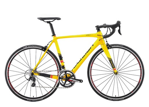 Image of Raleigh Criterium Race 2016 - Road Bike