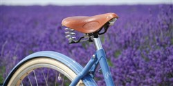 Pashley Poppy 28 Womens 2017 - Hybrid Classic Bike