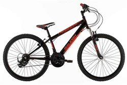 Raleigh Tumult 24w 2016 - Junior Bike