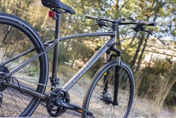 Specialized Crosstrail Sport 700c 2017 Back